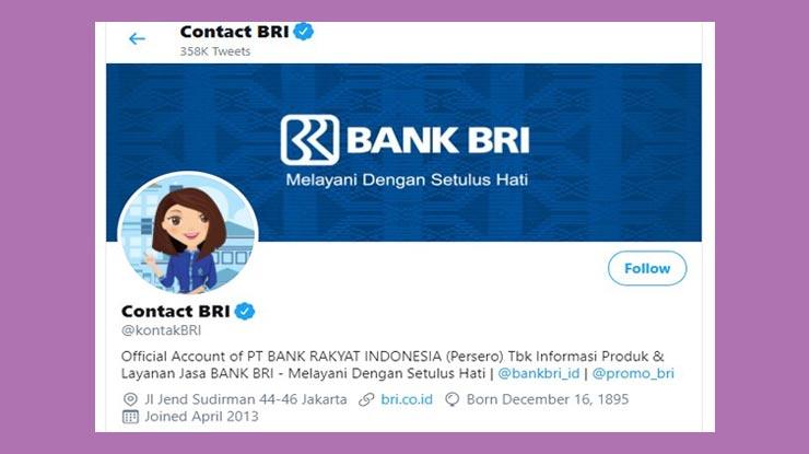 Twitter Contact Bri