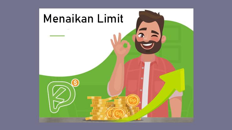 Cara Menaikan Limit Kredit Pintar Otomatis