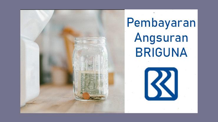 Pembayaran Briguna