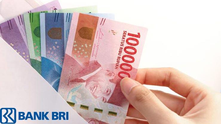 Jenis Pinjaman Bri Pns 2021